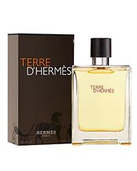 Hermes Terre Dhermes EDT
