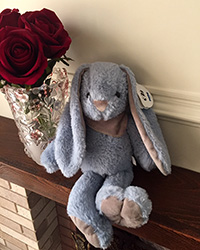 خرگوش جلی کت شالگردن دار آبی